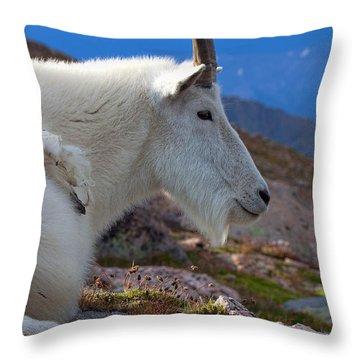 The Gathering Storm Throw Pillow
