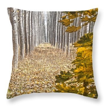 The Geometry Of Autumn Throw Pillow