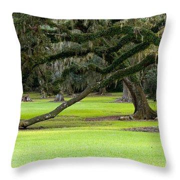 The Giving Tree Throw Pillow by Scott Pellegrin