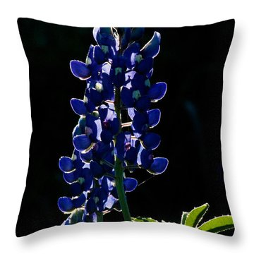 The Glow Of Spring Throw Pillow by Lisa Holmgreen