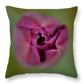 The Grand Opening Throw Pillow