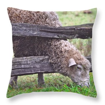 Throw Pillow featuring the photograph The Grass...on The Other Side by Lydia Holly