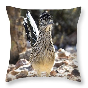 The Greater Roadrunner  Throw Pillow