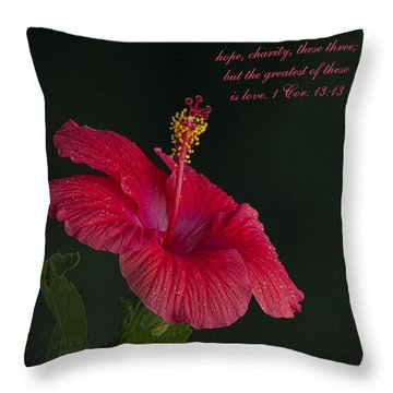 The Greatest Of These Is Love Throw Pillow by Kathy Clark