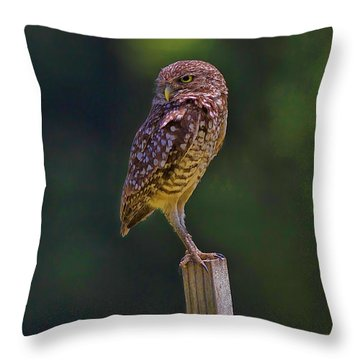 Throw Pillow featuring the photograph The Guardian by Anne Rodkin