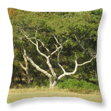 The Hand Of Nature Throw Pillow