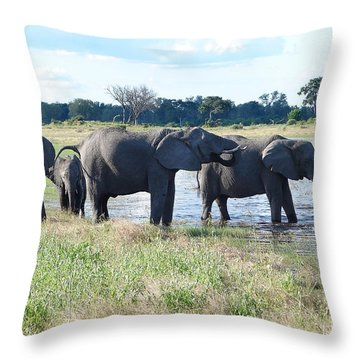 The Herd Enters The River Throw Pillow