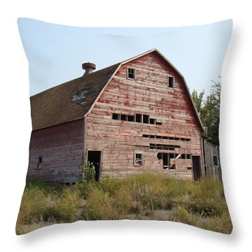 Throw Pillow featuring the photograph The Hole Barn by Bonfire Photography