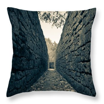 The Hunting System  Throw Pillow by Andreas Levi