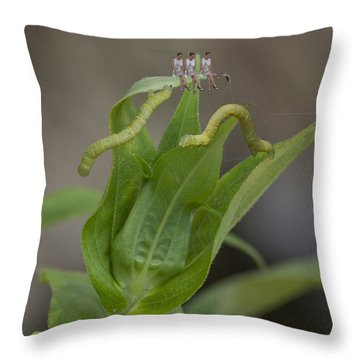 The Inch Girls Throw Pillow