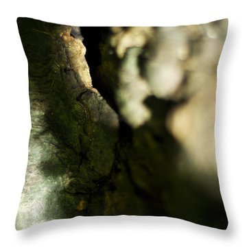 The Initiate Throw Pillow by Rebecca Sherman