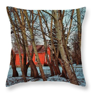 Throw Pillow featuring the photograph The Leaning by Rachel Cohen