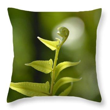 The Little Angel Throw Pillow by Melanie Moraga