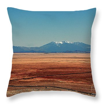 The Long Road To The Meteor Crater In Az Throw Pillow by Susanne Van Hulst