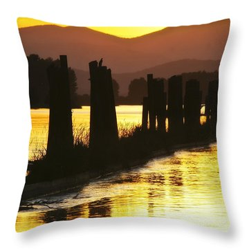 Throw Pillow featuring the photograph The Lost River Of Gold by Albert Seger