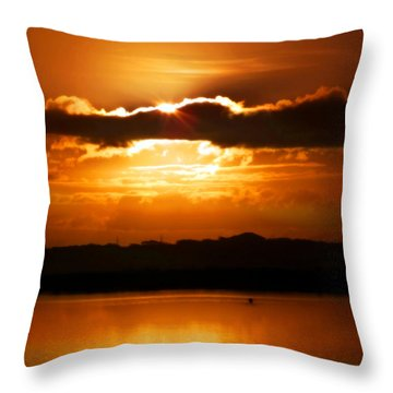 The Magic Of Morning Throw Pillow by Karen Wiles