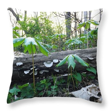 Throw Pillow featuring the photograph The May Apples by Gerald Strine