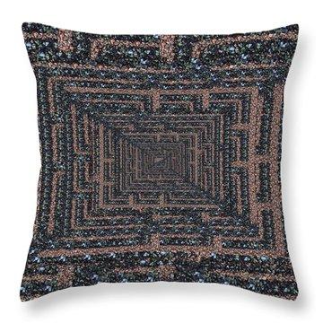 The Maze Throw Pillow by Tim Allen