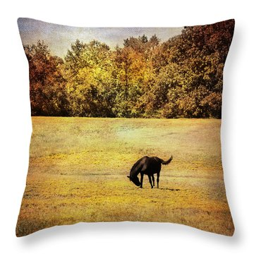 The Meadow Throw Pillow by Jai Johnson