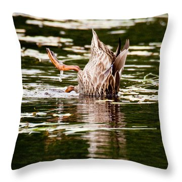 The Meaning Of Duck Throw Pillow by Brent L Ander