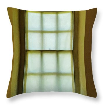 The Mustard Window Throw Pillow by Steve Taylor