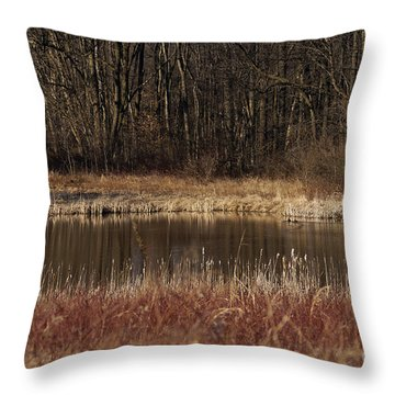 The Oasis Throw Pillow