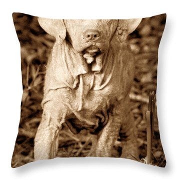 The Old Hunter Throw Pillow by David Lee Thompson