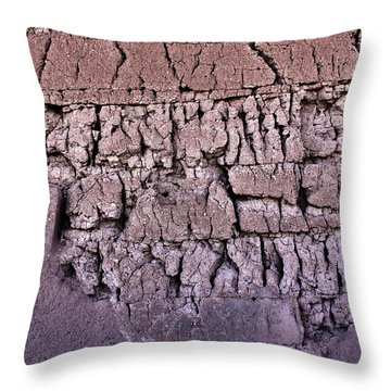 The Old Wall Throw Pillow by Adam Smith