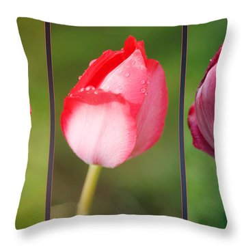 The One And Only Throw Pillow by Jutta Maria Pusl