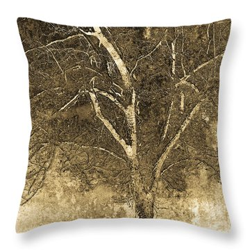 The Orchard Way Throw Pillow by Ron Jones