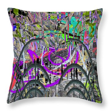 The Other Side Of The Coin Throw Pillow by Tim Allen