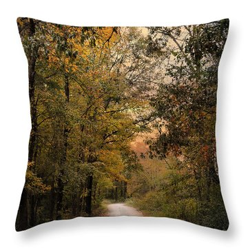 The Path Less Traveled 2 Throw Pillow by Jai Johnson