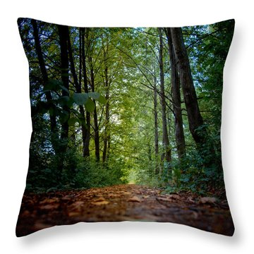 The Pathway In The Forest Throw Pillow