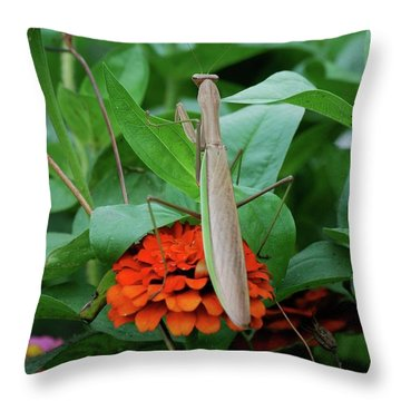 Throw Pillow featuring the photograph The Patience Of A Mantis by Thomas Woolworth