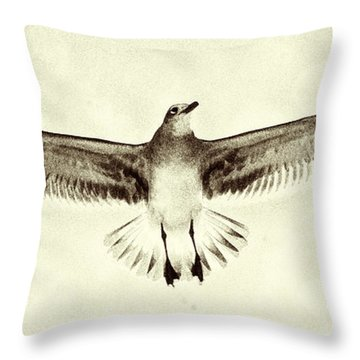 Throw Pillow featuring the photograph The Perfect Wing by Jim Moore
