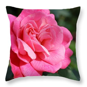 Throw Pillow featuring the photograph The Pink Rose by Fotosas Photography