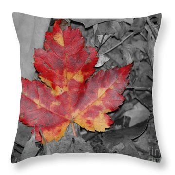 The Red Leaf Throw Pillow by Paul Ward