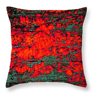 Throw Pillow featuring the photograph The Red Shed by Amy Sorrell