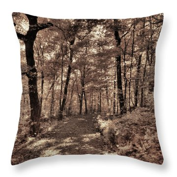 Throw Pillow featuring the photograph The Road Not Taken by William Fields