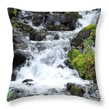 Throw Pillow featuring the photograph The Roadside Stream by Chalet Roome-Rigdon