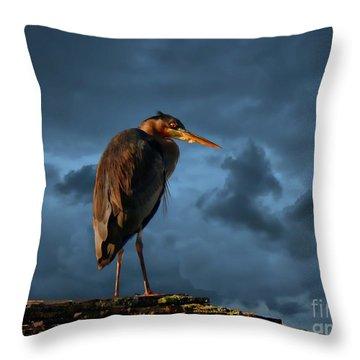 The Rooftop Watcher Throw Pillow by Gail Bridger
