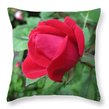 Throw Pillow featuring the photograph The Rose by Arlene Carmel