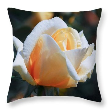 Throw Pillow featuring the photograph The Rose by Fotosas Photography