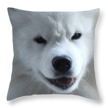 Smile Of The Arctic Life Throw Pillow