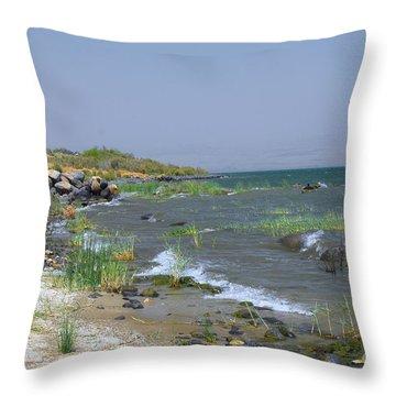 The Sea Of Galilee Throw Pillow by Eva Kaufman