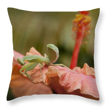 The Secret Of Surrender Throw Pillow by Sharon Mau