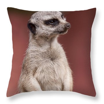 The Sentry Throw Pillow by Michelle Wrighton