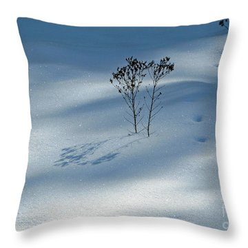 Throw Pillow featuring the photograph The Shadow Of Loneliness by Ausra Huntington nee Paulauskaite