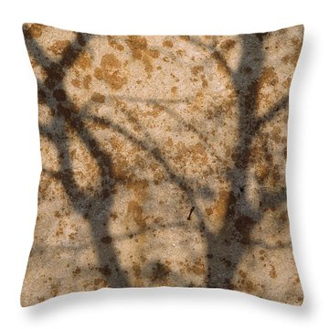 The Shadow Of Tree Branches Shaded Throw Pillow