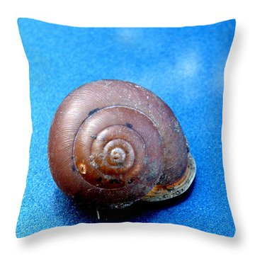 The Shell Of A Snail Throw Pillow
